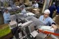 Feria con más de 2 mil puestos de trabajo en Santiago
